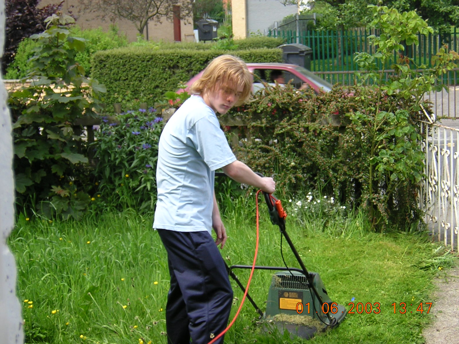 New mowed lawn lawnmowers snowblowers for How often should you mow your lawn
